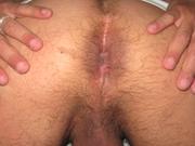 loboplateado
