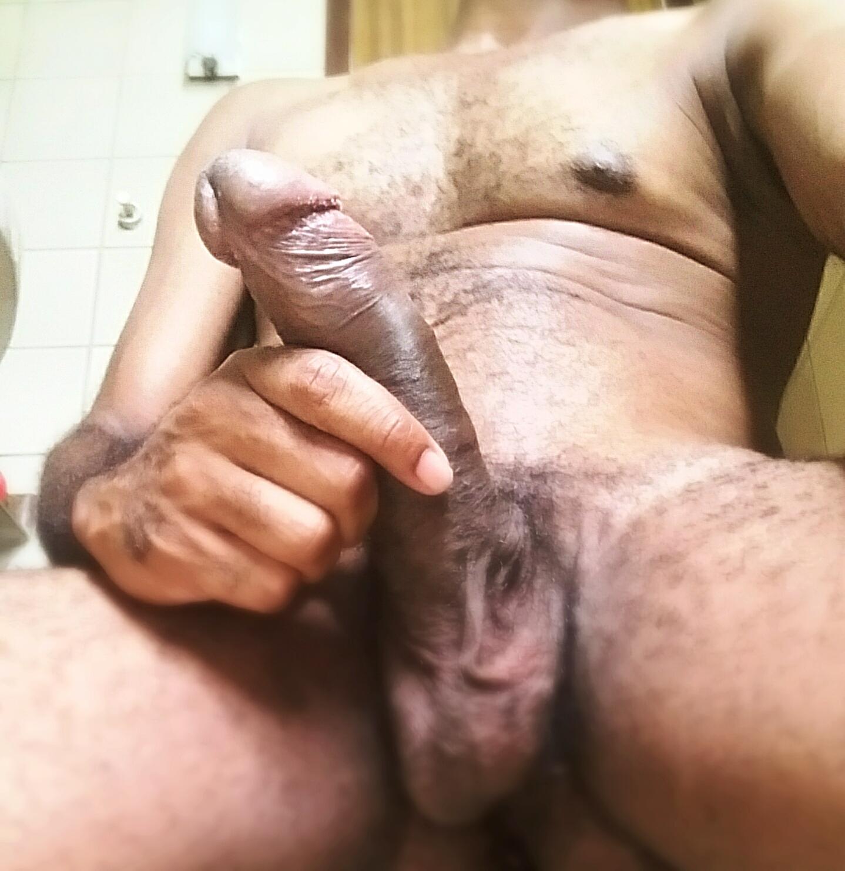 BrazilianDog