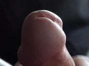 zakpolo