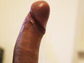 Stefano79