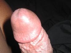 asscock2010