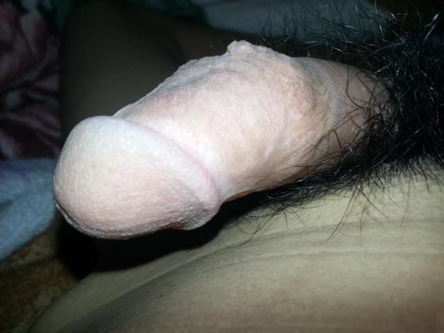 myreinder
