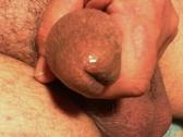 sexnutt