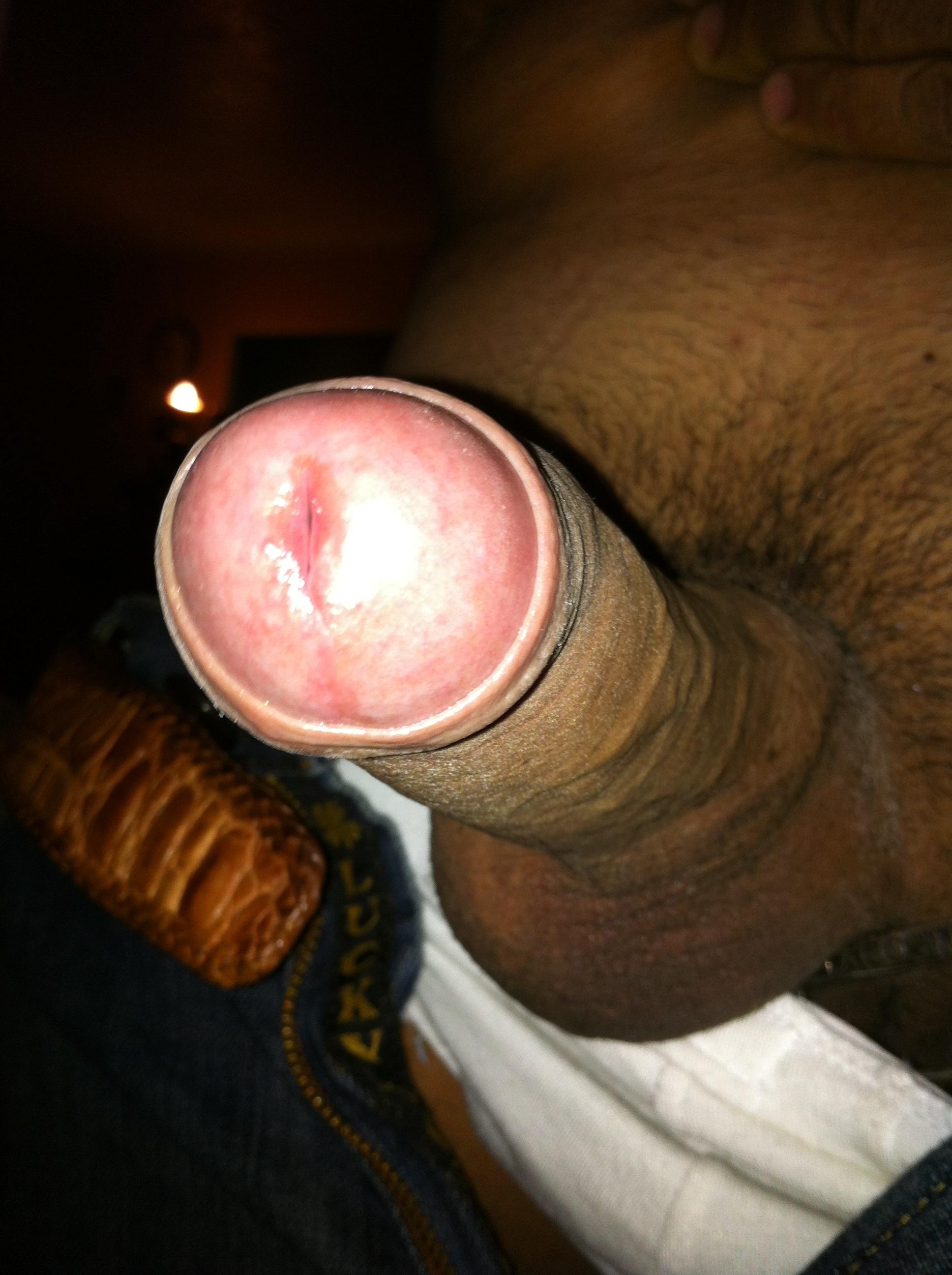 pinchila69