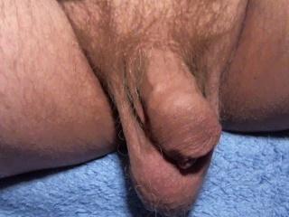 portgay