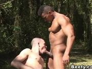 Beefy Adventure Leads to Sensual Fuck in the