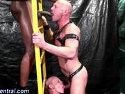 User_Uploaded_hdk_central__16_.mp4