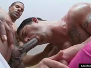 Hot tattoed guy gets cock sucked