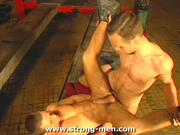 Muscle Stud Rams That Tight Cornhole