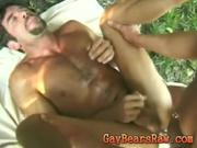 Two bears cumming intense
