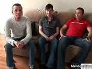 Pretty group sex scene with three gay
