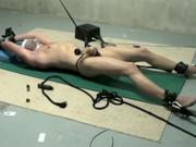 tied up and sucked  out by milking machine