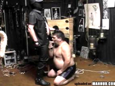 Big bear is tied up then sucks dick