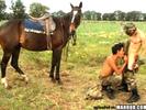 This horse won'..